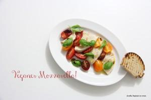 Veganer_Mozzarella2